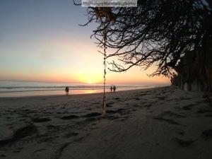 Beachshotwithseaweedhangingdownwatermarked