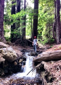 Me near the beginning of our hike up the Big Sur River in Julia Pfeiffer Burns State Park